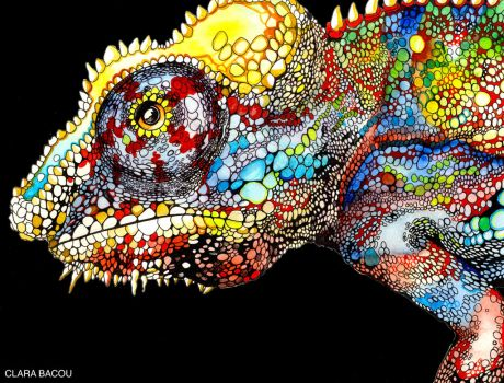 Chameleon by ClaraBacou