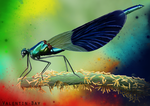 Colorization of the dragonfly. by ValentinBay