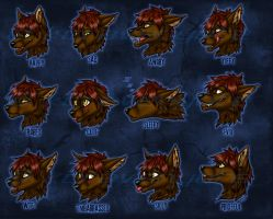 Conner Expression Sheet Comm by kcravenyote