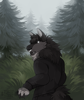fenharel commission by ForestFright