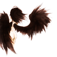 Black Wings by Pabeme