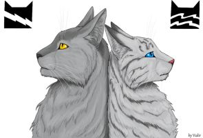Graystripe and Silverstream by Vialir