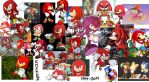 The Year of Knuckles 2014 by Mighty355