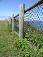 Fence by cloudwatcher1
