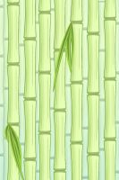 Bamboo Wallpaper by unbrok3n