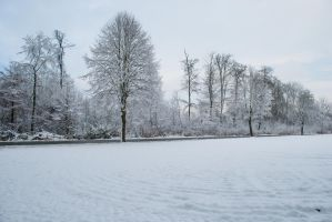 Snowscape Stock 80 by Sed-rah-Stock