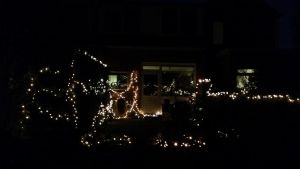 Xmas lights B (halfway the garden to the backdoor) by Waltervd