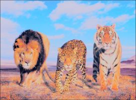 BIG cats by stasiabv