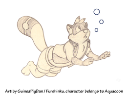 Aquacoon goes for a swim! by GuineaPigDan