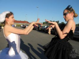 White and Black Swan Catfight by MiracoliCosplay