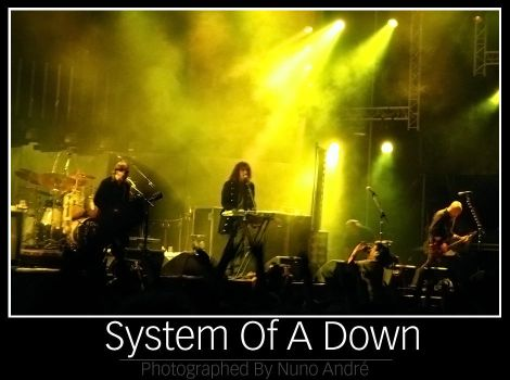 Down With the System by Birthmark