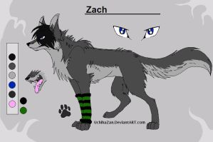 Zach by ZachTheWolf