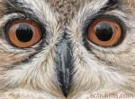 ACEO Eagle Owl by sschukina