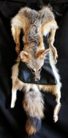 Gray fox pelt and deerskin bag by lupagreenwolf
