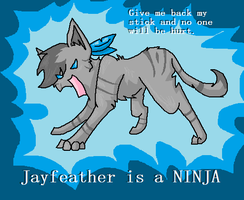 Jayfeather is a NINJA by asel1