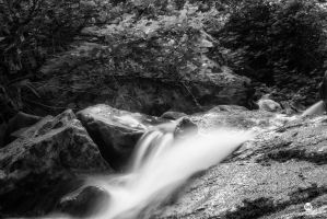 Slide Over the Moss BW by mjohanson