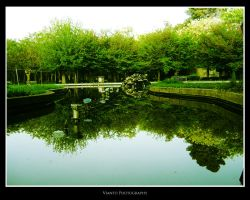 Water and Green by Vianto