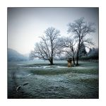 Matin givre by lawra