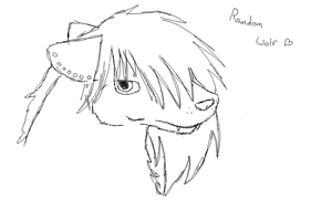 Random Wolf by TheSoulKeeperz