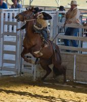 STOCK 2013 Rodeo-199 by fillyrox