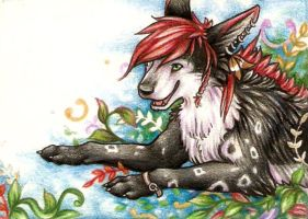 ACEO- Eleweth by grouchywolfpup