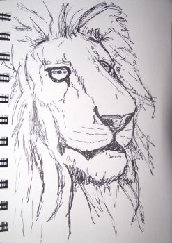 Lion by teaareohwhy