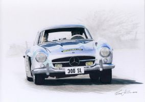 Mercedes Benz 300 SL Gullwing by klem