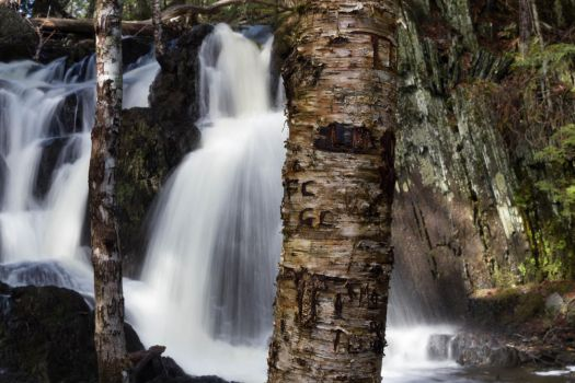 Patty's Falls - Drew Plantation, Maine 05 by Riot207Photography