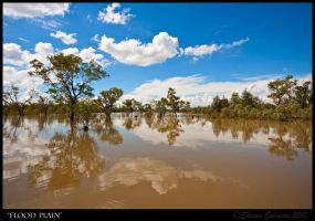 Flood Plain by Syndyne