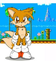 Tails- Emerald Hill by gospel