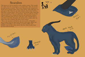 Species Sheet: Searahm by Toothlesslover123