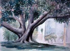 Banyan Tree by AmazingStreetPaint