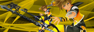 Sora- Master ID by WolfRaver13