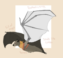 Flying Fox Design by MBPanther