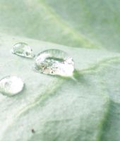 waterdroplet 1 by crawlintothesun