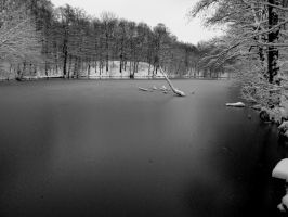 Winter BW 4 by MephistoFFF
