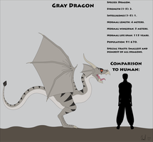 Fantasy Race: Gray Dragon by Kurvos
