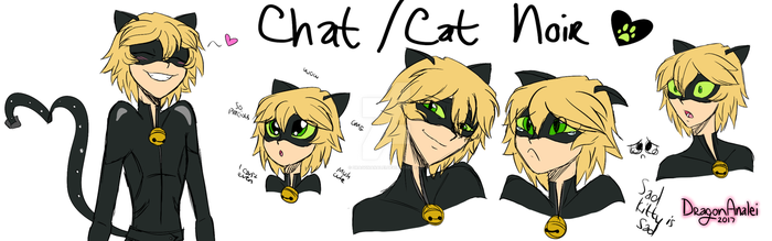 Chat Noir sketches by DragonAnalei