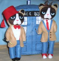 Grumpy Cats 10th and 11th Dr. Who by lincornell