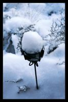 Snow-filled Lamp by chromosphere