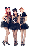 T-ara (png) render by Sellscarol