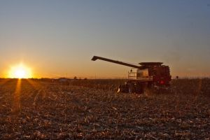 Harvest 2009 2 by cthacker