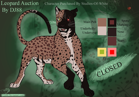 Shadow Leopard Auction -closed- by DJ88