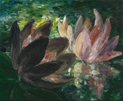 Evening Waterlilies by littleCi