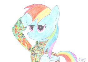 Rainbow Dash Flecktarn by ArroyoPl
