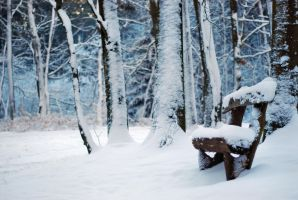 take a seat, Winter by Wilithin