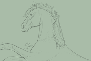 Horse Head WIP by Saerl