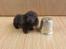 Cookie choc cocker spaniel listed on ebay by squizzy7o7