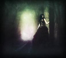 In the woods... by SilenceNocturne