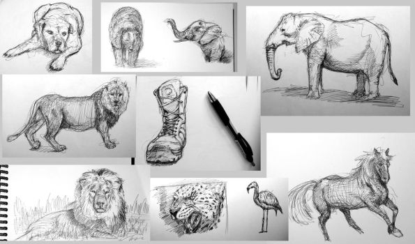 Ball point pen sketches by TAMAKINGHINI